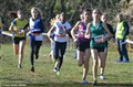 Cross National du Val de Marne (34)