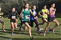 Cross National du Val de Marne (35)