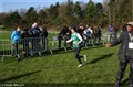LIFA de Cross 2014 (2)